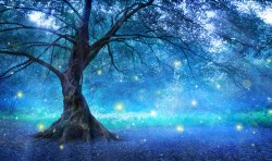 Fairy Tree In Mystic Forest, magic concept